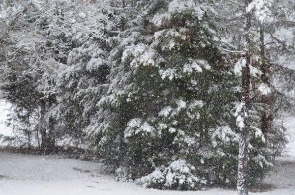 1st snowfall 2013