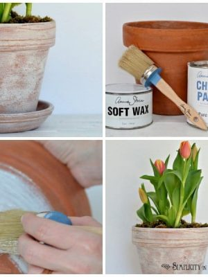 How to Age Terracotta Pots with a Mixture of Annie Sloan Chalk Paint and Wax