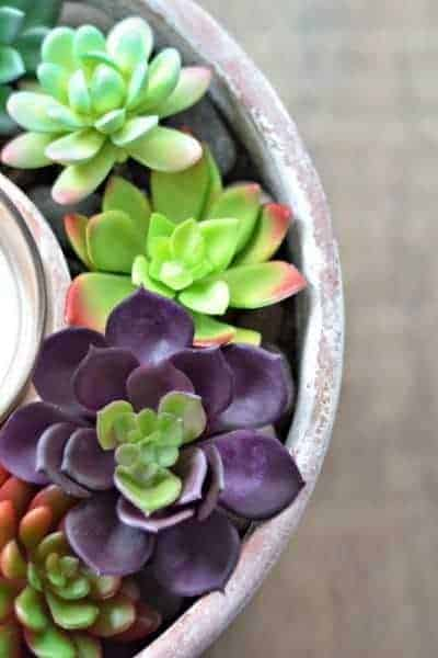 DIY Dollar Tree Faux Succulent Candle Centerpiece