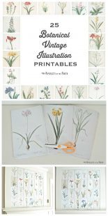 Such a simple way to decorate over the fireplace mantle for spring or summer. 25 free botanical vintage illustrations.