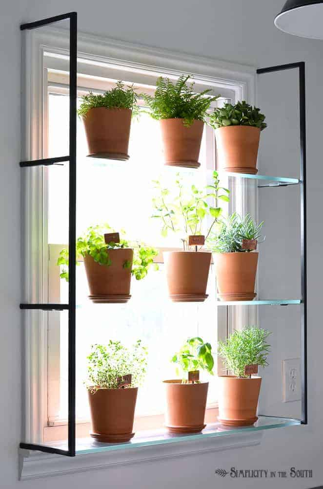 window herb garden plant shelf
